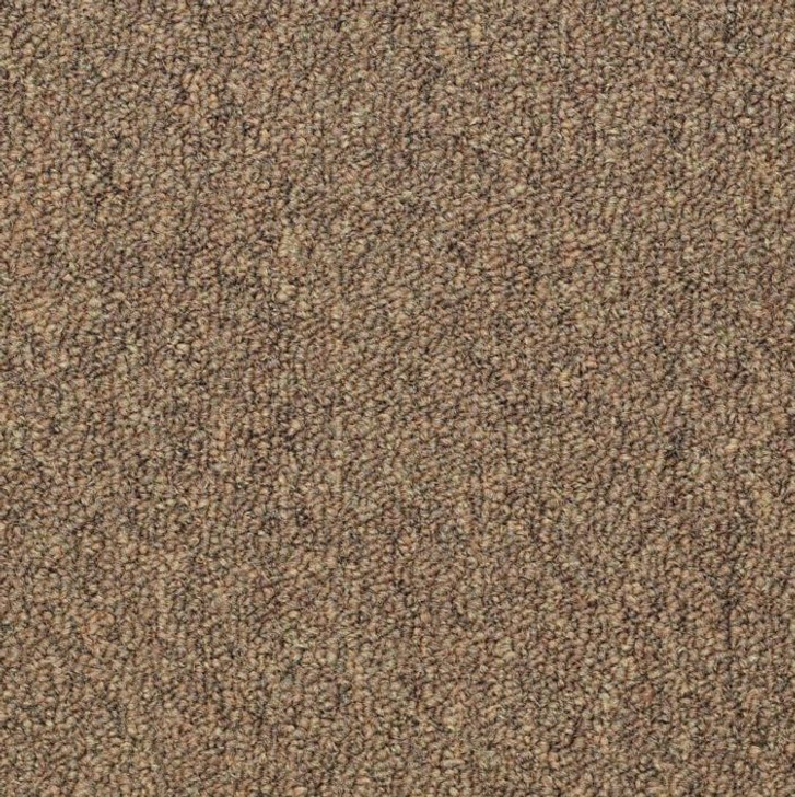 Copy of Shaw Philadelphia Capital III BL 54280 Commercial Carpet