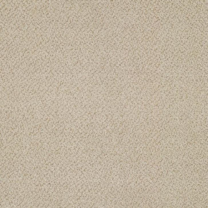 Shaw Philadelphia Primus 54510 Commercial Carpet