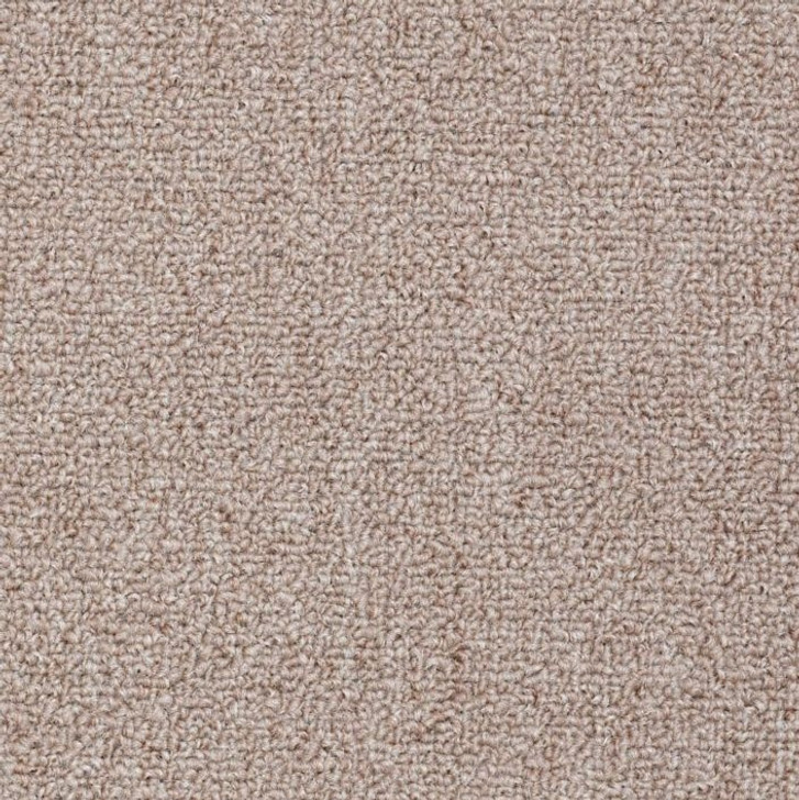 Shaw Philadelphia Win Win 54441 Commercial Carpet