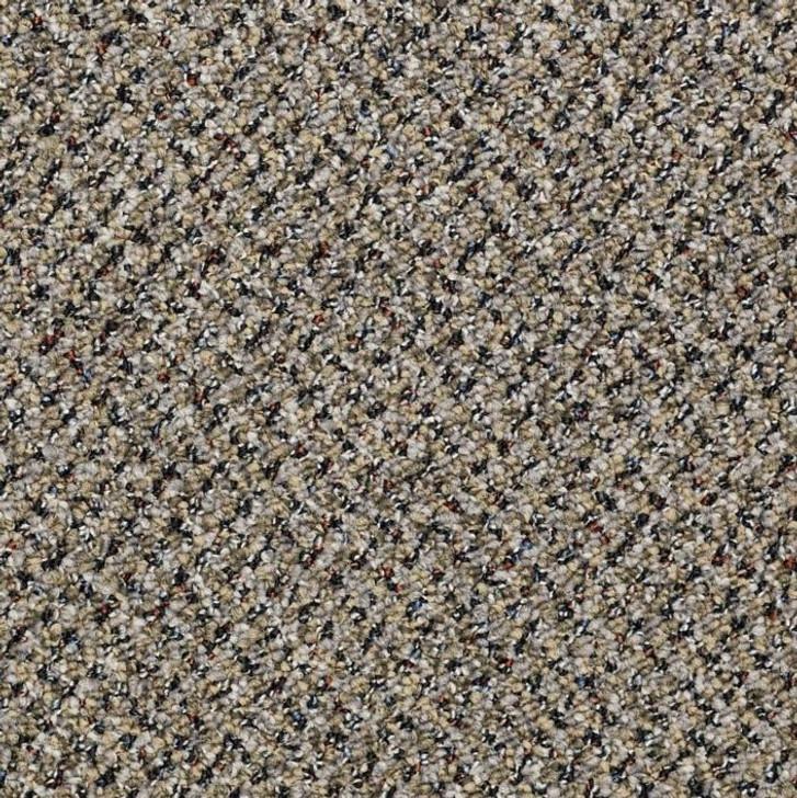Shaw Philadelphia Rousing Review 54043 Commercial Carpet