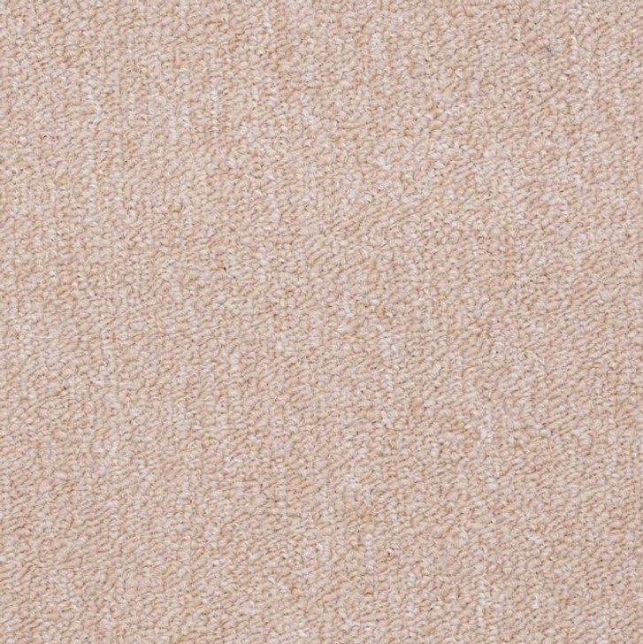 Shaw Philadelphia Winchester 50247 Commercial Carpet