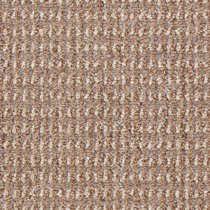 Shaw Philadelphia Mill Classic 54415 Commercial Carpet