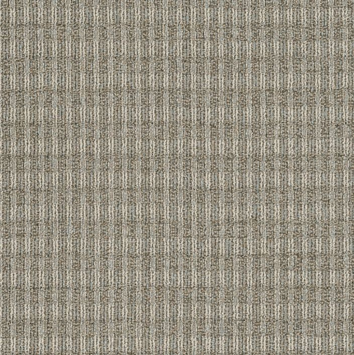 Shaw Philadelphia Fair Shake 54831 Commercial Carpet
