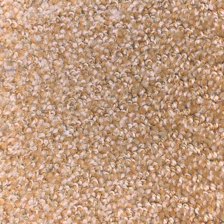 Georgia Carpet Commercial 633 Square Feet 20 Oz. Carpet Final Sale FREE SHIPPING