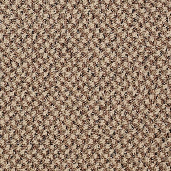 Shaw Philadelphia New Basics 54793 Commercial Carpet