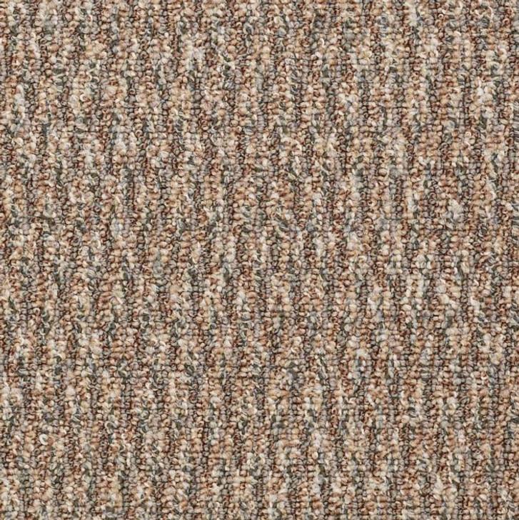 Shaw Philadelphia Loud & Clear Speak Freely 54446 Commercial Carpet