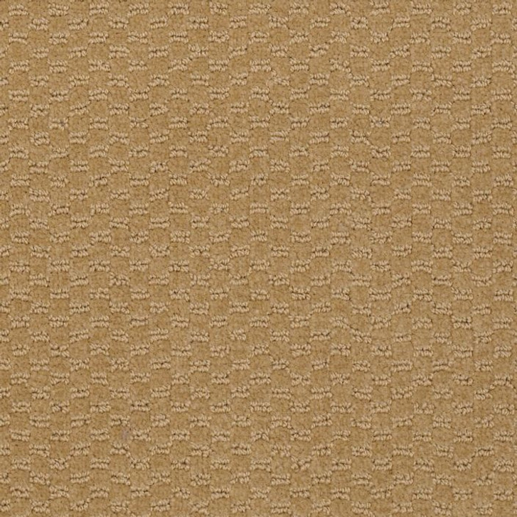 Shaw Philadelphia Queen Commercial Elements Q0421 Commercial Carpet