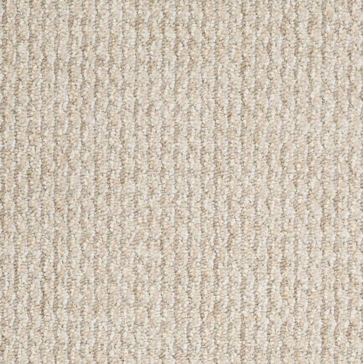Shaw Philadelphia Taking Names 54660 Commercial Carpet