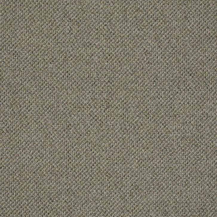 Shaw Philadelphia Monument 54788 Commercial Carpet