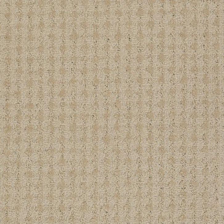Shaw Philadelphia Snapshot Live EPBL 54737 Commercial Carpet