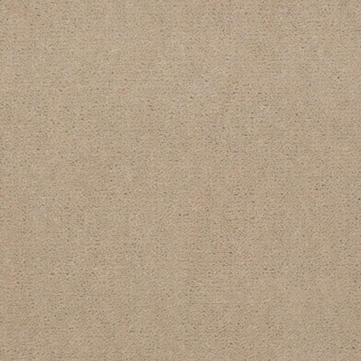Shaw Philadelphia Emphatic II 30 54255 Commercial Carpet