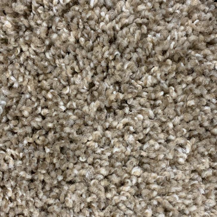 Georgia Carpet JV 473 Sq Ft Residential Carpet