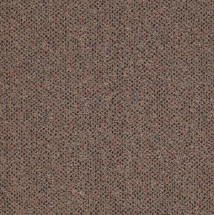 Shaw Philadelphia Phenomenon 26 54643 Commercial Carpet