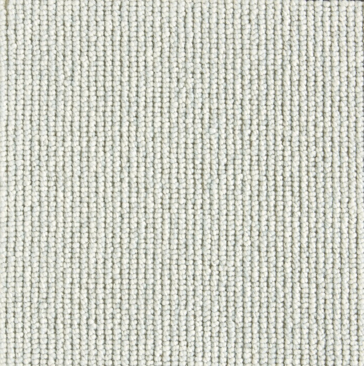 Stanton Natural Wonders Rogue Wool Blend Residential Carpet