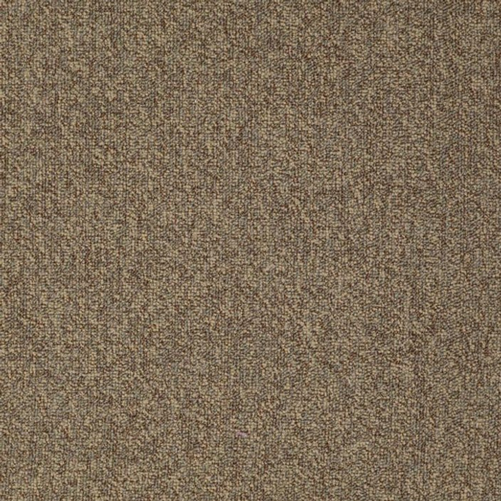 Shaw Philadelphia Scoreboard II 28 SLP 54676 Commercial Carpet