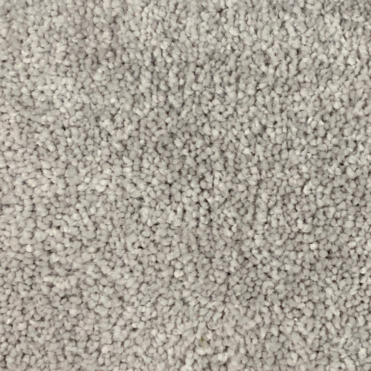 Georgia Carpet Carpet Misc 507 Square Feet Carpet Final Sale FREE SHIPPING