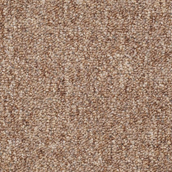 Shaw Philadelphia Stonefield 24 A 54134 Commercial Carpet