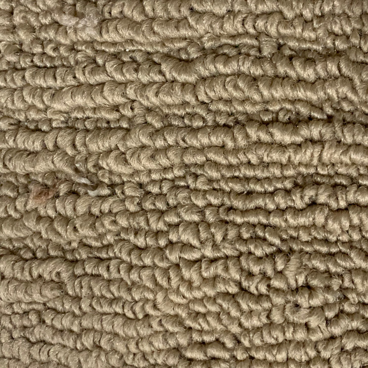 Shaw PGR797 348 Square Feet 32 Oz. Commercial Carpet Final Sale FREE SHIPPING