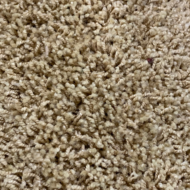 Michael's Carpet Attraction 321 Square Feet 40 oz. Residential Carpet Final Sale FREE SHIPPING