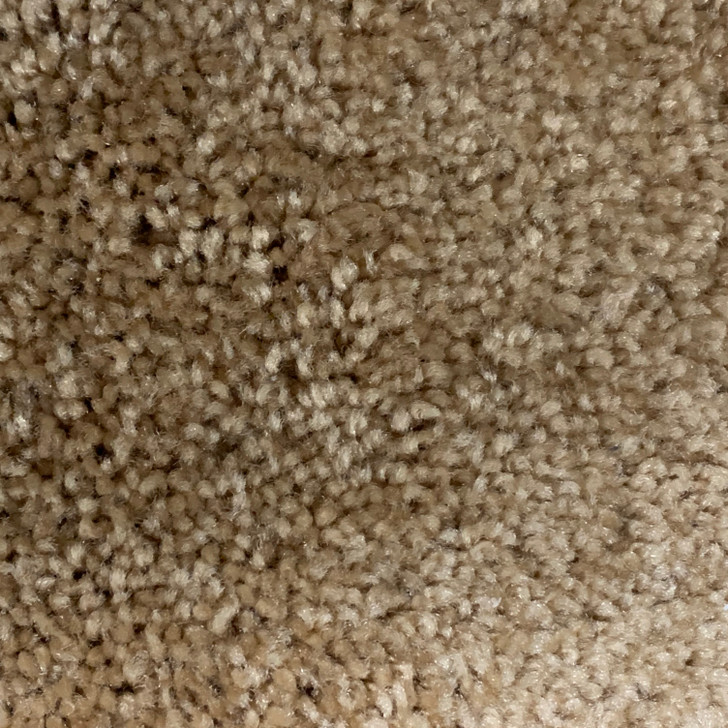 CW Industries BY40B 318 Square Feet Commercial Carpet Final Sale