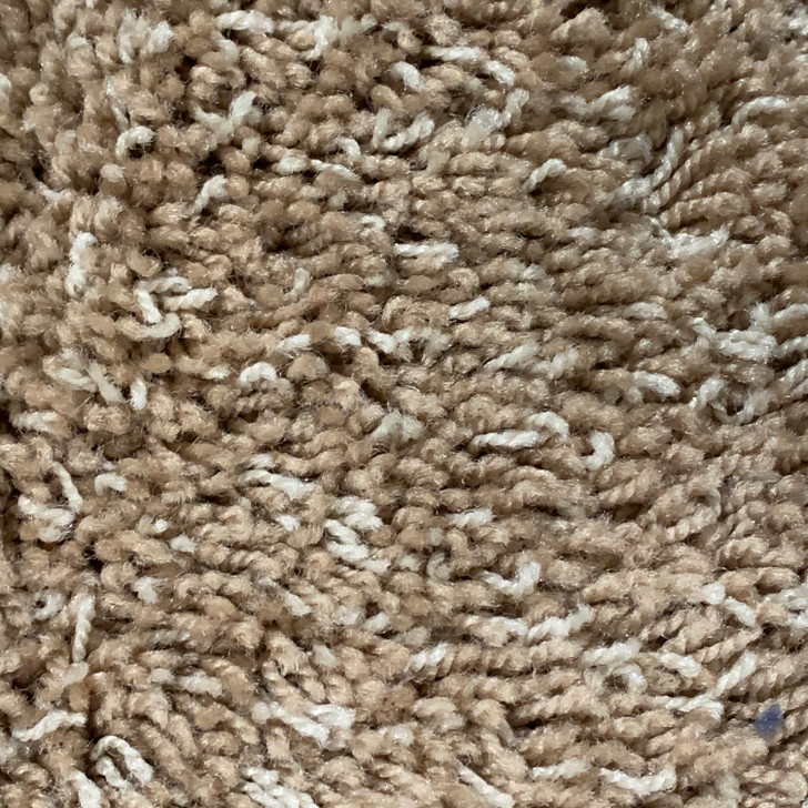 Lonesome Oak Fearless 369 Square Feet Residential Carpet Final Sale