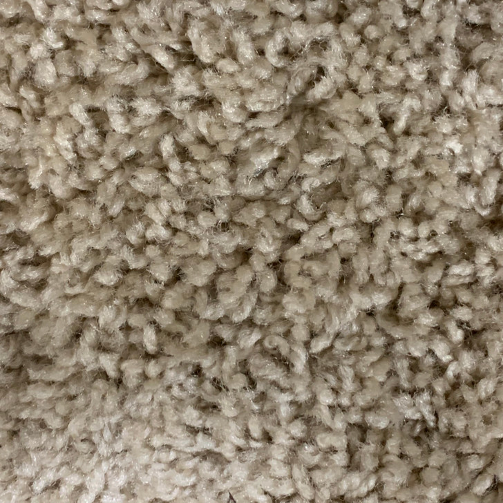 Georgia Carpet JV 699 Sq Ft 28 Oz. residnetial Carpet Final Sale Free Shipping