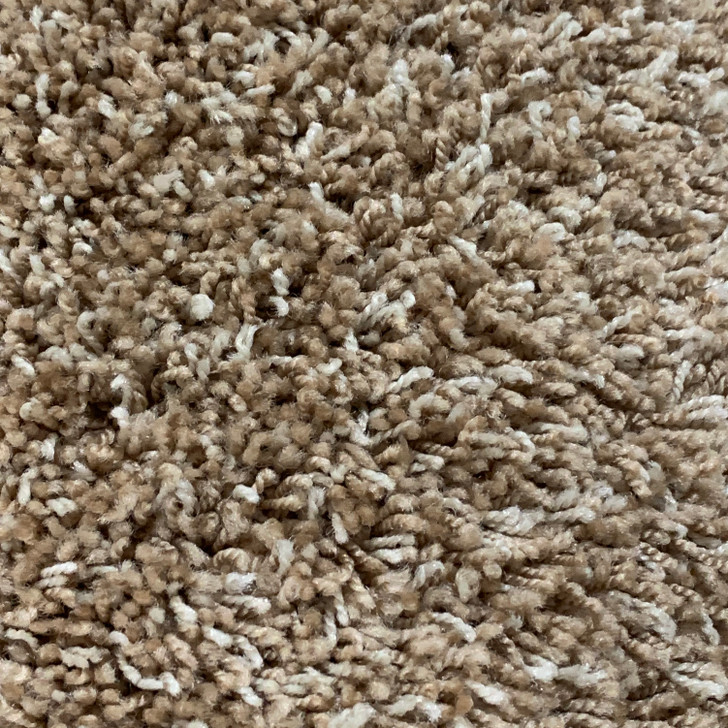 Lonesome Oak Fearless 321 Square Feet Residential Carpet Final Sale