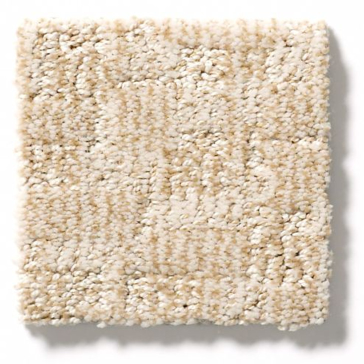Anderson Tuftex Kindred Collection Paw-Tay ZZ221 Residential Carpet