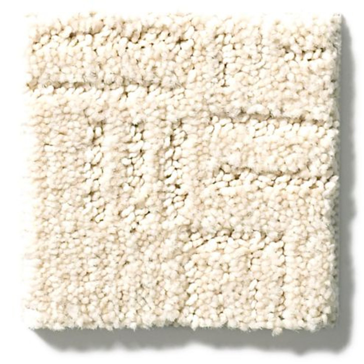 Shaw Anderson Tuftex Terra Collection Diego ZZ223 Residential Carpet