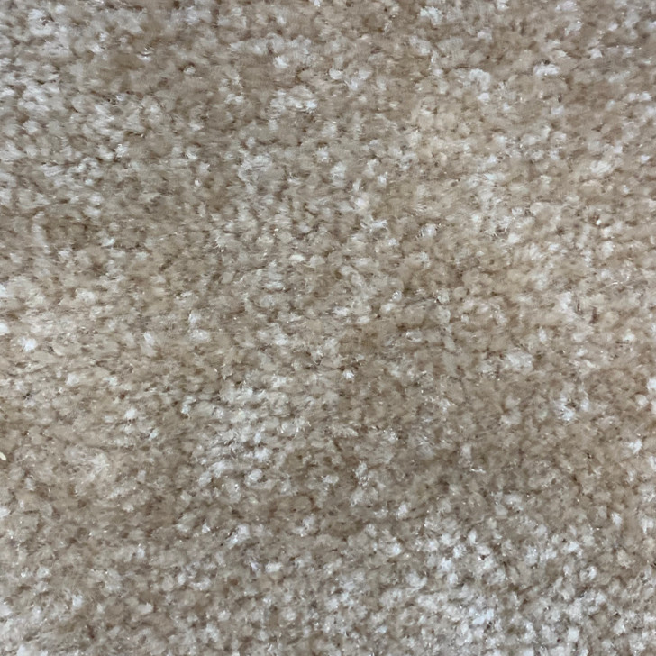 Lonesome Oak Turn Around II 633 Square Feet 40 Oz. Residential Carpet Final Sale