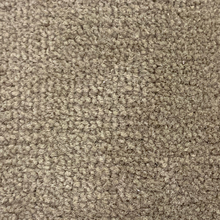 Shaw Queen Diplomat II 30 8T490 605 Square Feet 30 Oz. Commercial Carpet Final Sale FREE SHIPPING