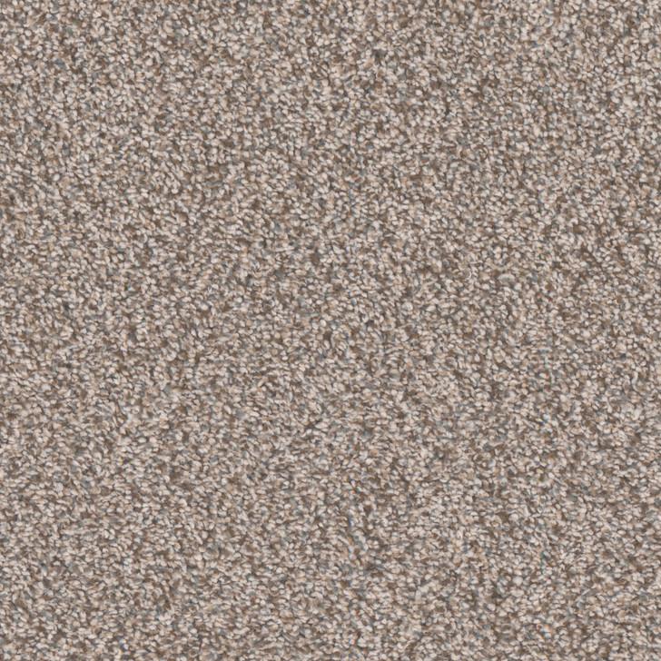 Tarkett Candler Park R1148 Residential Carpet