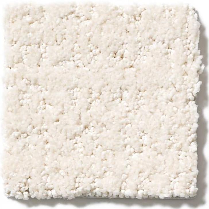 Shaw Anderson Tuftex Atria ZZ029 Residential Carpet