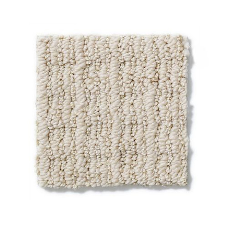Shaw Anderson Tuftex By Chance Z6882 Residential Carpet