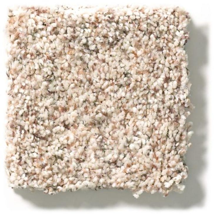 Shaw Anderson Tuftex Carmel Coast ZZ046 Residential Carpet