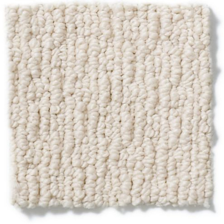 Shaw Anderson Tuftex Casual Life Z6812 Residential Carpet