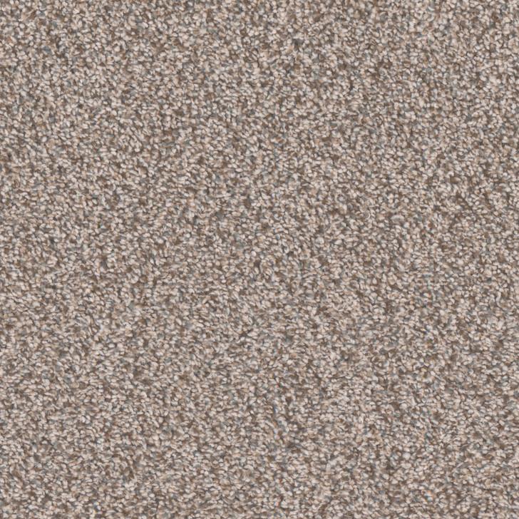 Tarkett Inman Park R1166 Residential Carpet