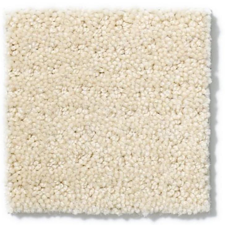Shaw Anderson Tuftex Vibe Z6863 Residential Carpet