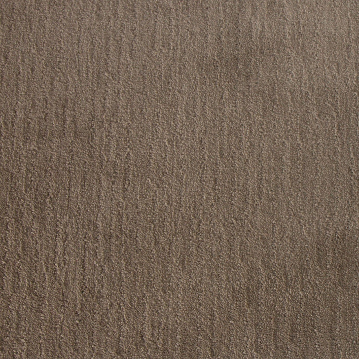 Tarkett Oxford R3055 Residential Carpet
