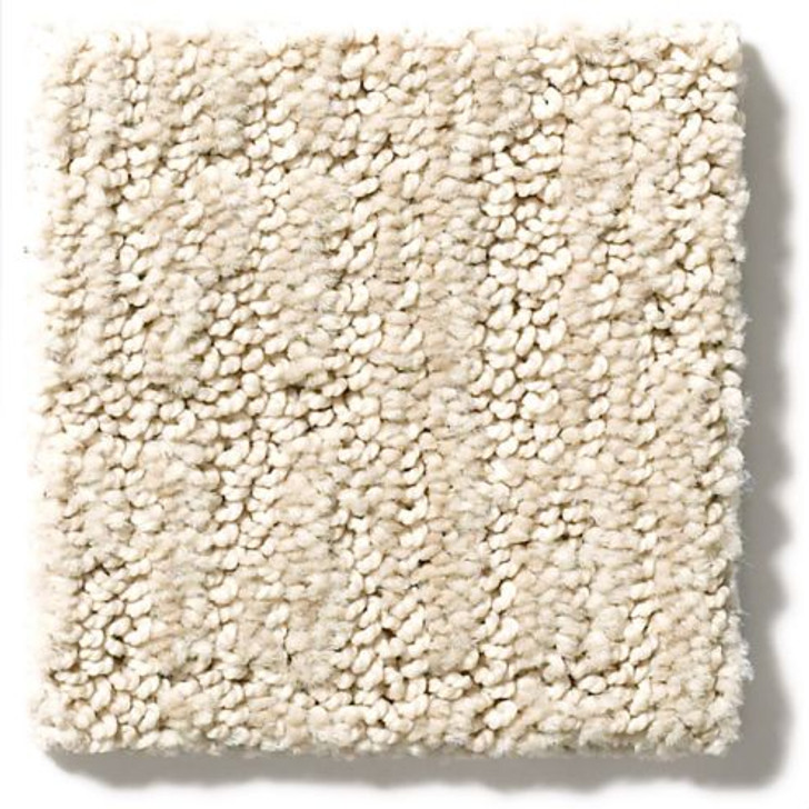 Shaw Anderson Tuftex Classics Collection Wanderer ZZ224 Residential Carpet