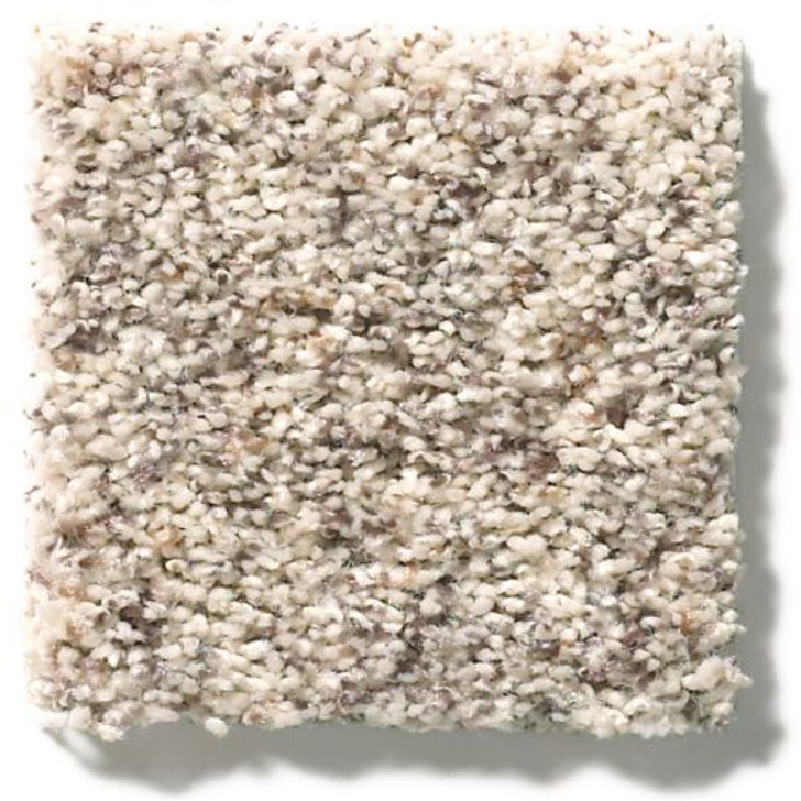 Shaw Anderson Tuftex Classics Collection Explorer ZZ099 Residential Carpet