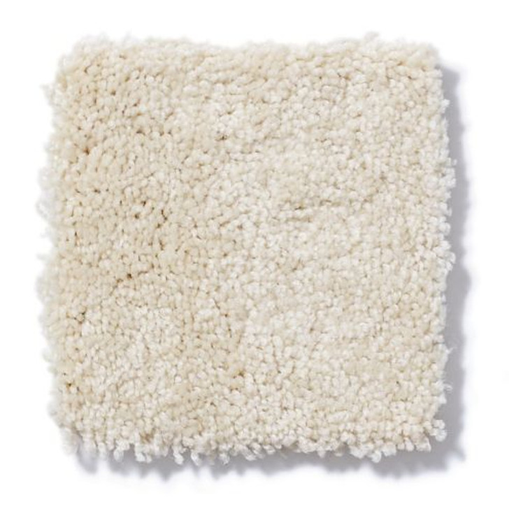 Shaw Anderson Tuftex Stainmaster Petprotect Gus Z6956 Residential Carpet