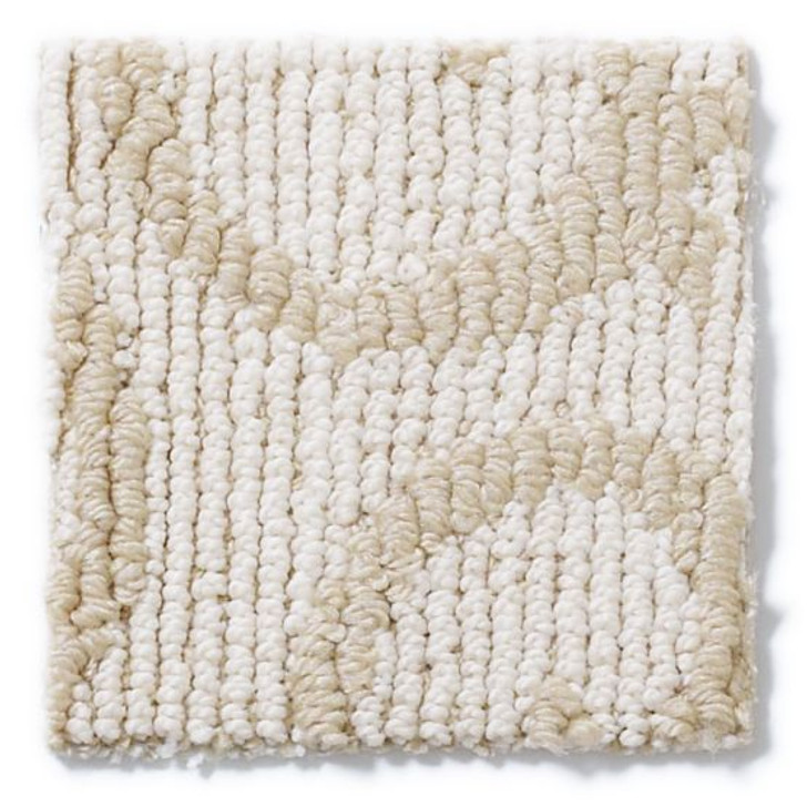 Shaw Anderson Tuftex Builder Sense of Style ZB890 Residential Carpet