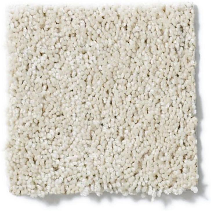 Shaw Anderson Tuftex Emotions Z6582 Residential Carpet
