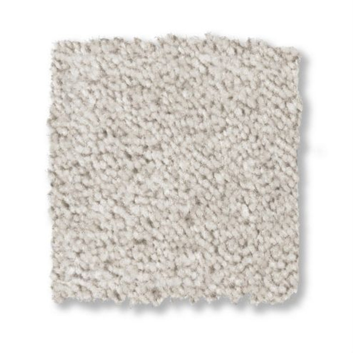 Shaw Anderson Tuftex Exclusively Z0783 Residential Carpet