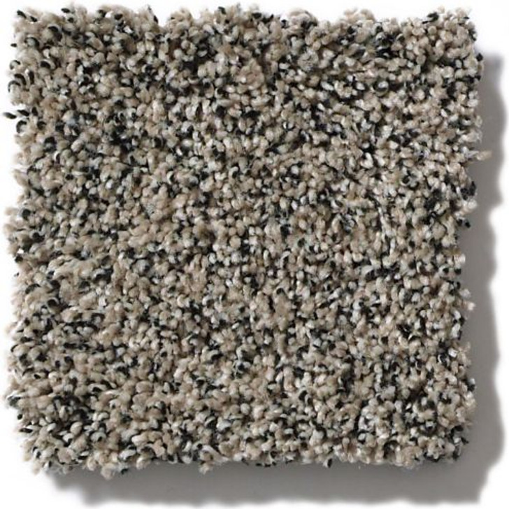 Shaw Anderson Tuftex Shimmy ZZ041 Residential Carpet