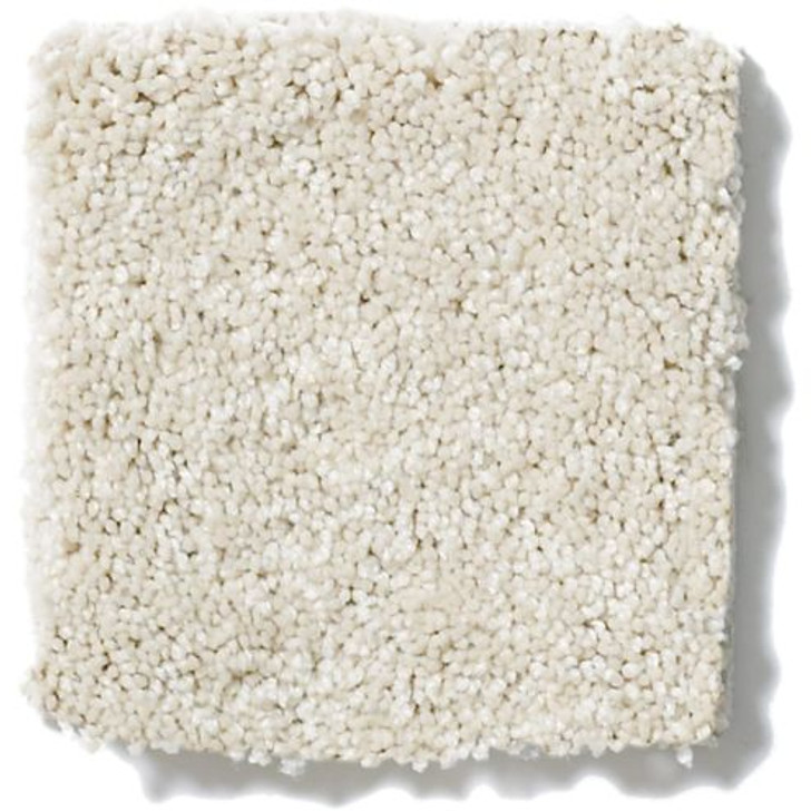 Shaw Anderson Tuftex One Sweet Day Z6854 Residential Carpet