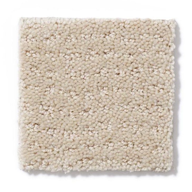 Shaw Anderson Tuftex Builder Your Right ZL957 Residential Carpet