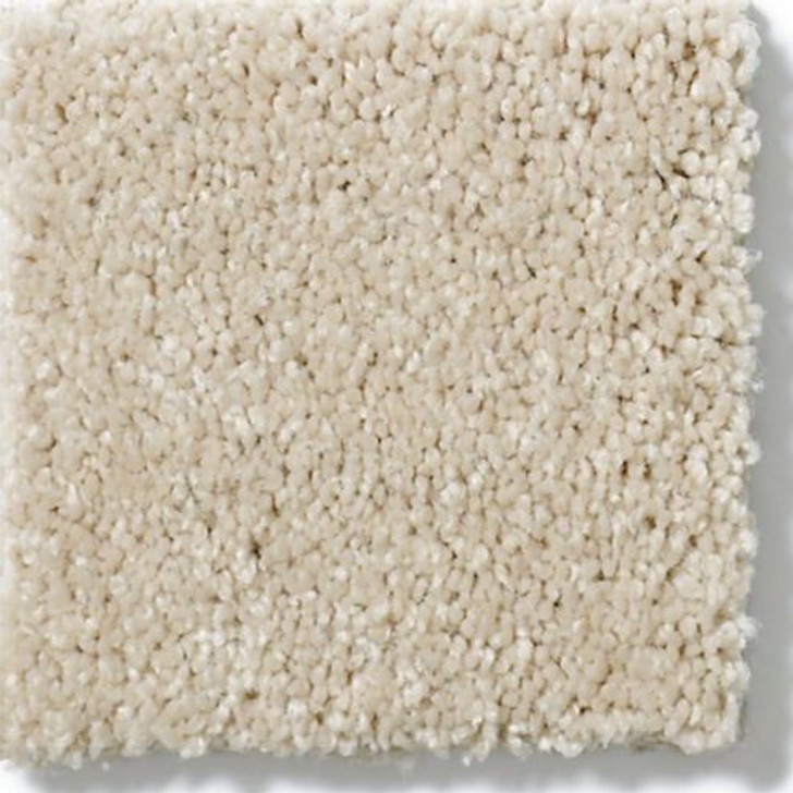 Shaw Anderson Tuftex Serendipity II Z6942 Residential Carpet