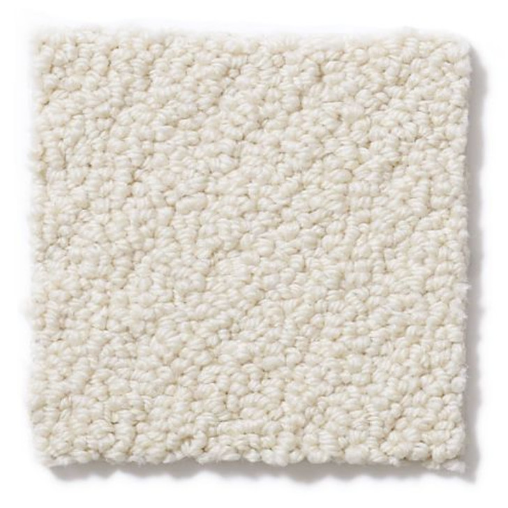 Shaw Anderson Tuftex Stainmaster PetProtect On Point ZZ012 Residential Carpet